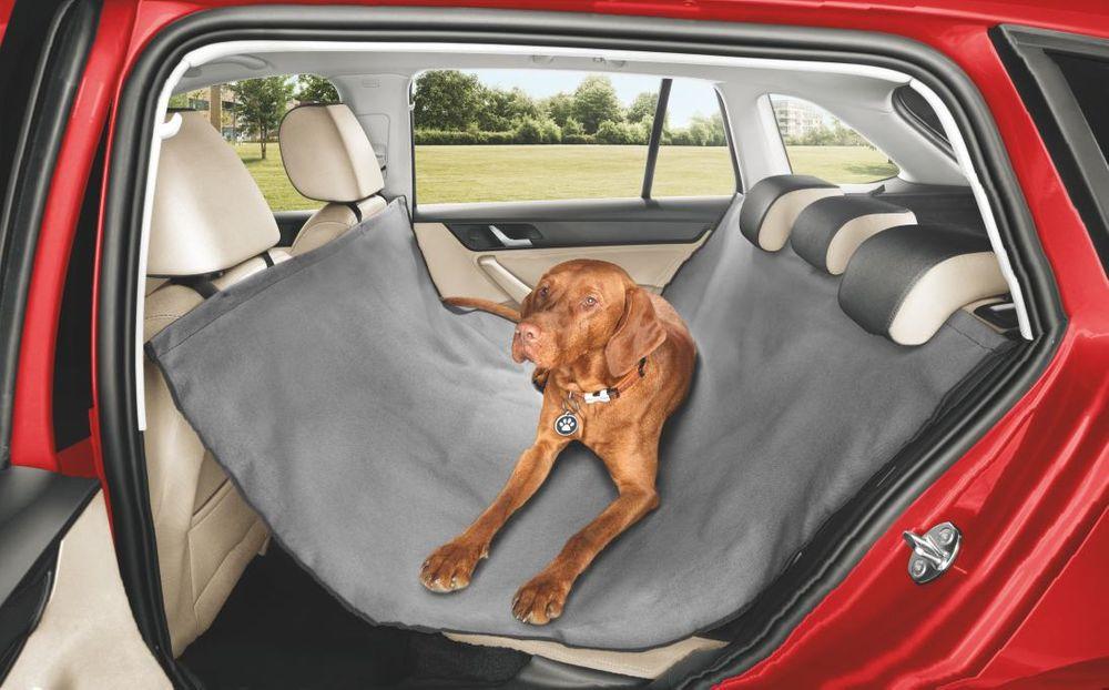 Škoda рассказала, как возить в машине пёселей и котиков