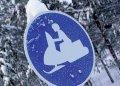 Нюансы покупки подержанного снегохода