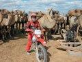 Сегодняшняя наша прогулка — по Монголии