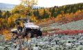 Тур по Уралу на мотовездеходах Yamaha