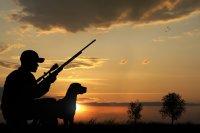 Охота на диких гусей сложное дело, требующее знаний и опыта