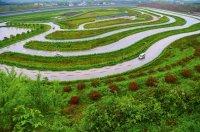 Завод Changan