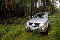 Дары леса в июне